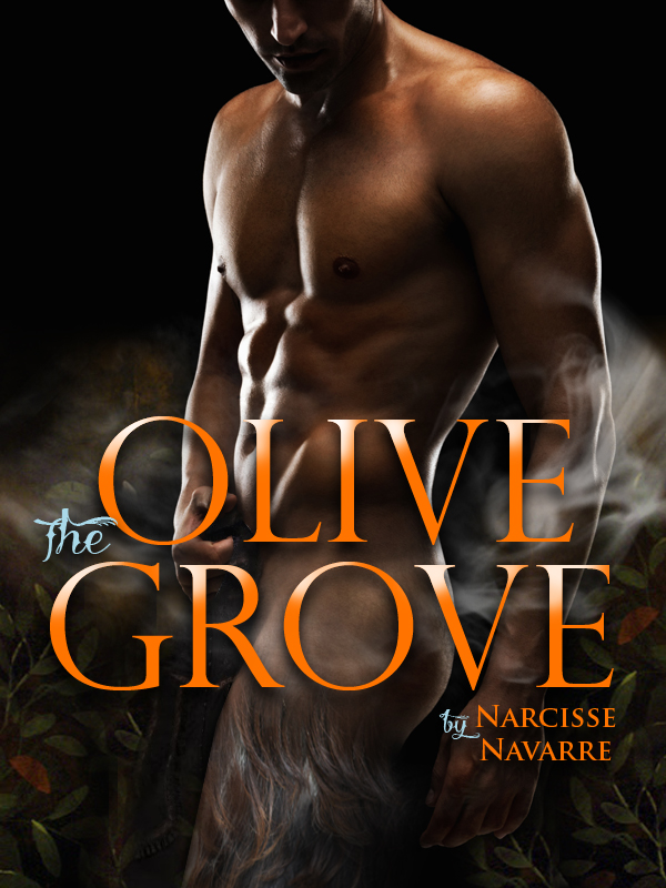 The_Olive_Grove_Narcisse_Navarre